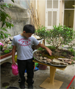"A young gardener cares for a ""garden on a tray"", in this case a miniature Mediterranean landscape."