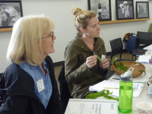 Fundamentals class at Anchor Center, Denver, CO
