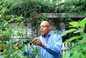 Skyland Trail participant works in the garden