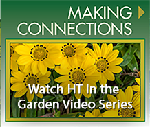 Horticultural Therapy Institute's  Videos