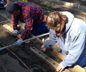 diehl planting template